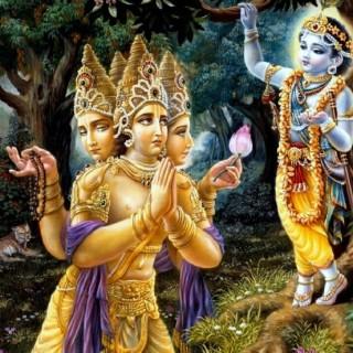 krishna brahma